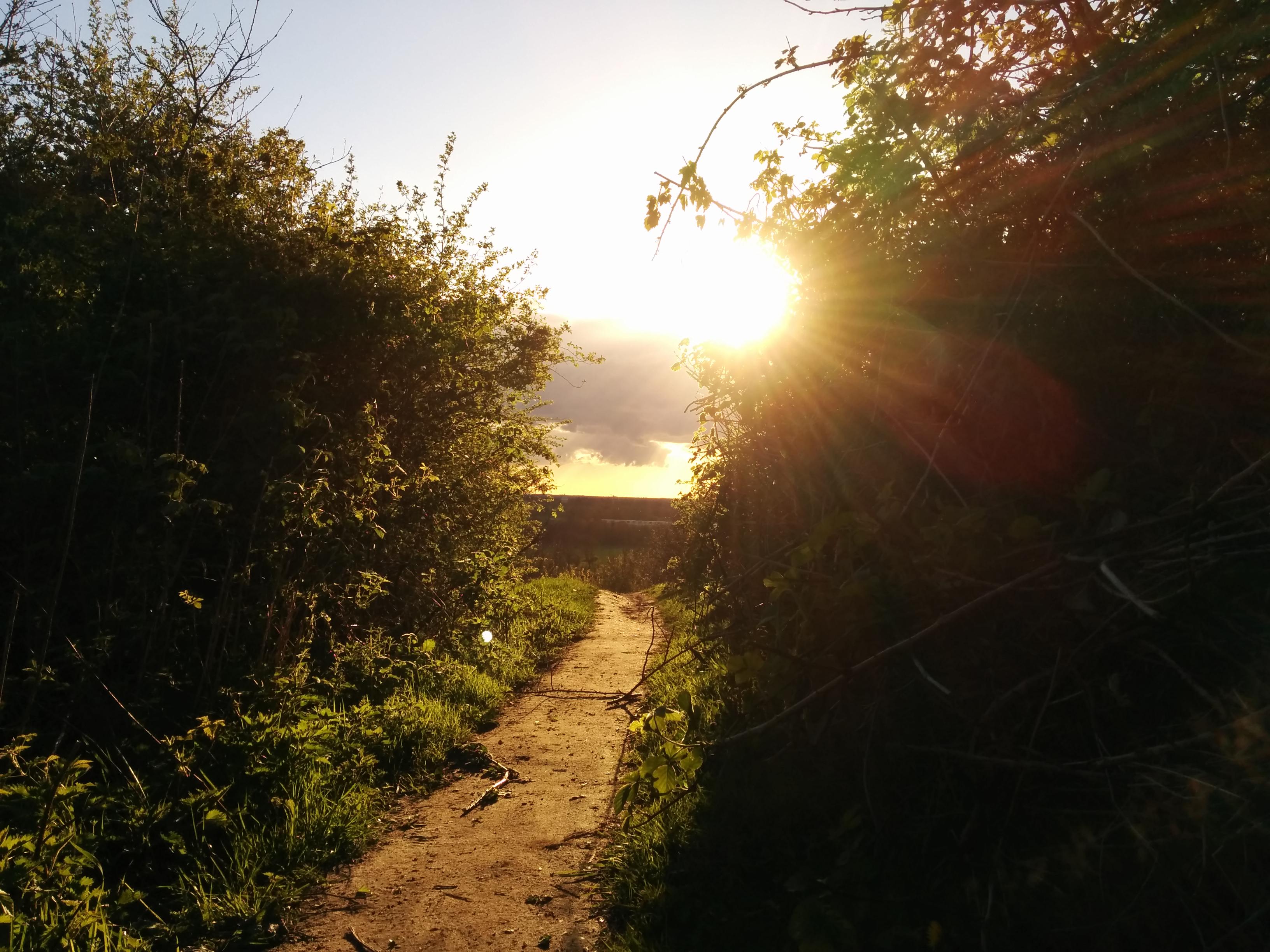 Frühlingssonne überm Hummelsee