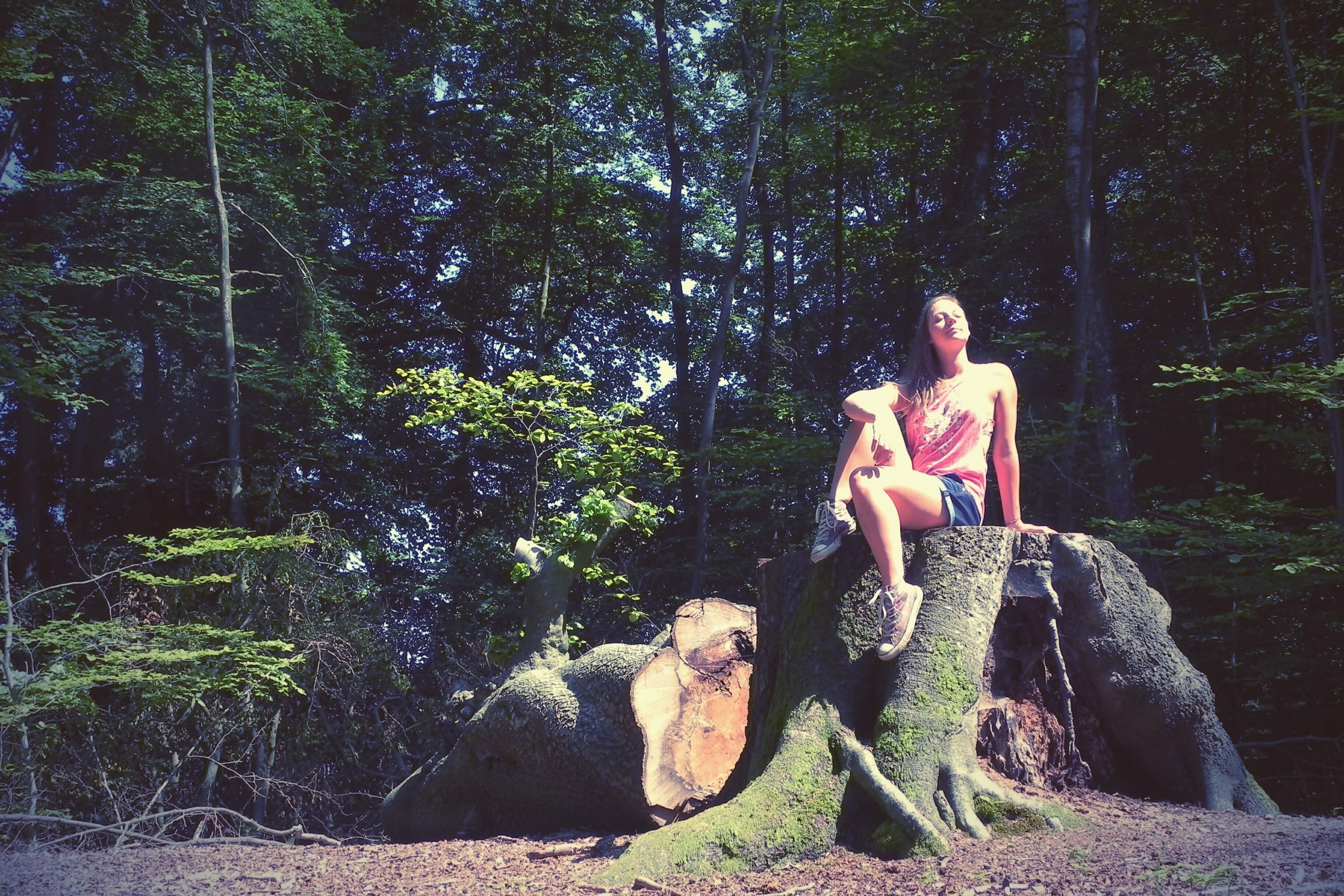 FMA | Wohldorfer Wald